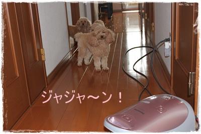 2012_0306_092629-IMG_5903.jpg
