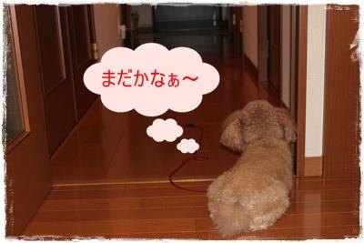 2012_0306_191841-IMG_5929.jpg