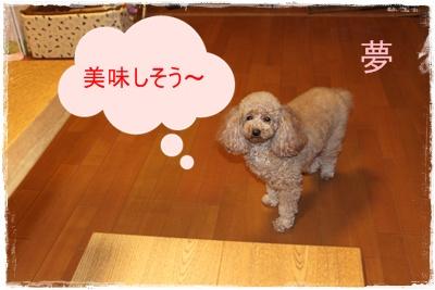 2012_0314_214944-IMG_6025.jpg