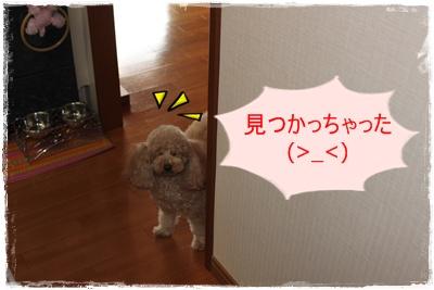 2012_0315_084846-IMG_6029.jpg