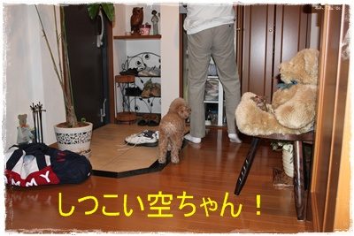 2012_0317_090651-IMG_6061.jpg