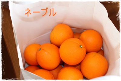 2012_0319_114703-IMG_6093.jpg
