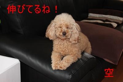 2012_0326_125720-IMG_6163.jpg