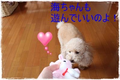 2012_0326_130021-IMG_6178.jpg