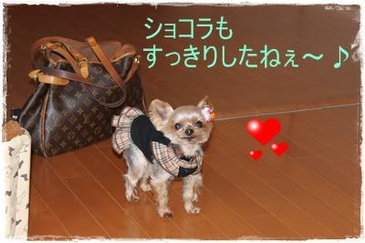 2012_0331_162131-IMG_6293.jpg