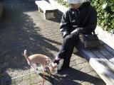 2009-10-27youchien13.jpg