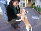 2009-10-27youchien14.jpg