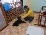 2009-12-18youchien10.jpg