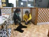 2009-12-18youchien18.jpg