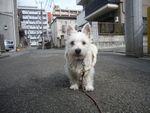 itakura111_20100201184326.jpg