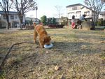 itakura1181.jpg
