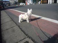 itakura148_20100205223944.jpg
