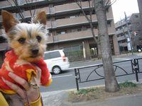 itakura208_20100215225317.jpg