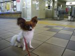 itakura513_20091025144814.jpg