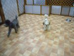 itakura635_20091108154341.jpg