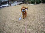 itakura724_20091202223650.jpg