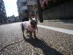 itakura901_20100118233747.jpg