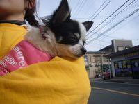 itakura923_20100123162753.jpg