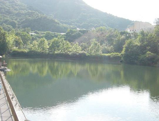 川島町の池