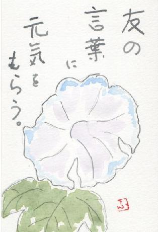 asagao822.jpg