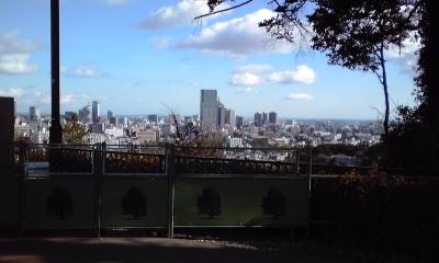 仙台城から市街地を見る、111219_1049~01