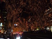 仙台イルミネーション2,1030016_convert_20111227144918