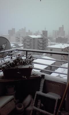 雪サンコミ3、110116_1528~01