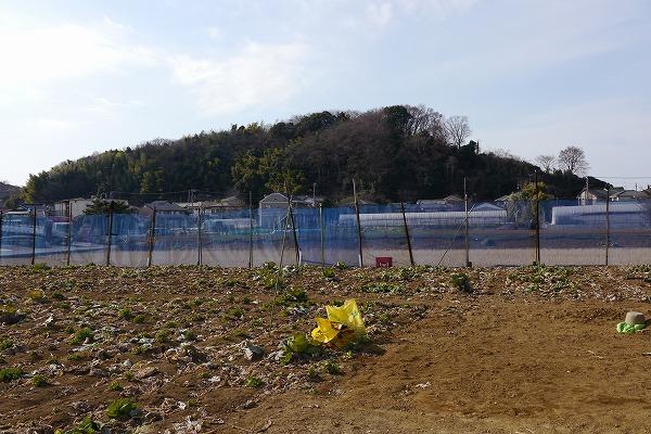 201101小机 (75)