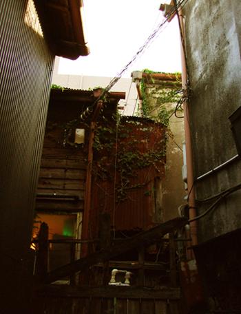 20090920_01.jpg