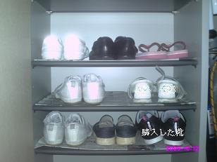 娘の靴箱 整理前