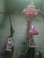 自転車とスケーター