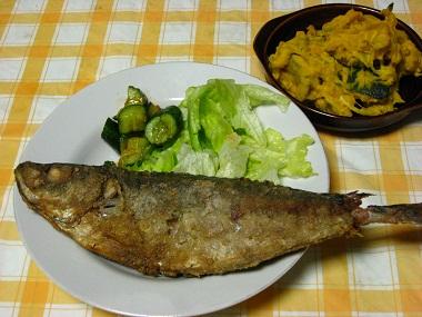 20110405夕食