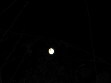 20110811月夜