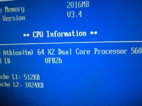 NEC_0136_20100206221524.jpg