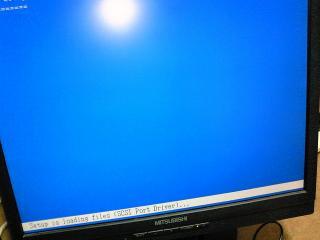 NEC_0392.jpg