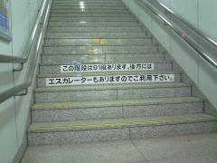 NEC_0400.jpg