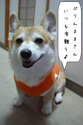 2010.2.14若松イオンOW♪0036-1