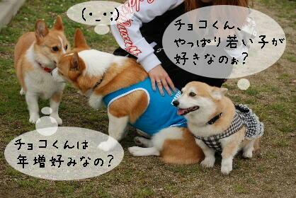 2010.5.22ケンちゃんの旅立ち