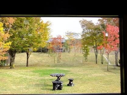2010.11.6?7 旅行 Fine Pix撮影0084