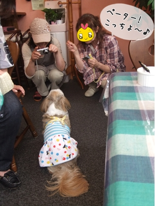 2011_0615(008).jpg