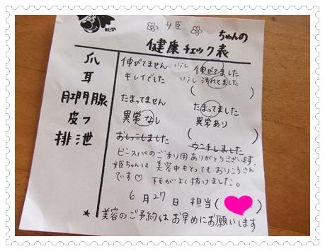2011_0627(014).jpg