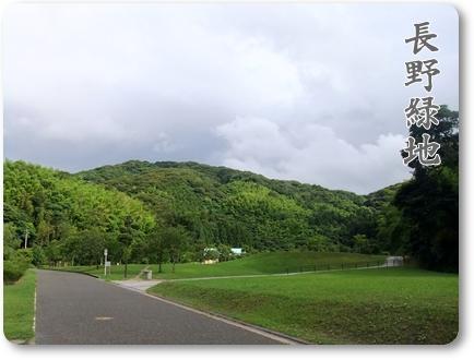 2011_0627.jpg