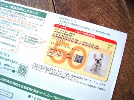 DSCN2942_convert_20120924234831.jpg