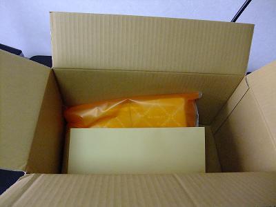 商品と封筒のみ。プチプチみたいな衝撃クッション系とかはなし。