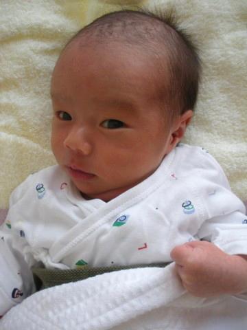 2009-11-031.jpg
