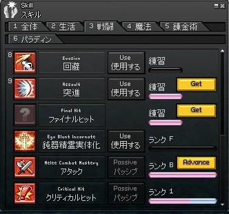 mabinogi_2009_11_21_008.jpg