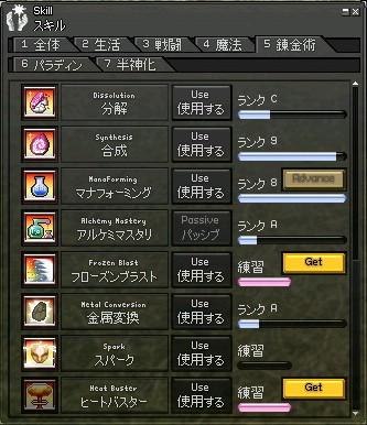 mabinogi_2010_08_14_008.jpg
