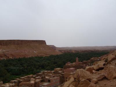 2泊3日砂漠ツアー1日目昼~2日目22