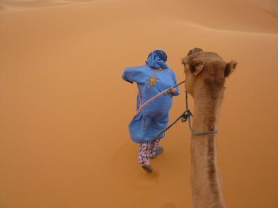 2泊3日砂漠ツアー(ラクダ乗りとテント宿泊)4