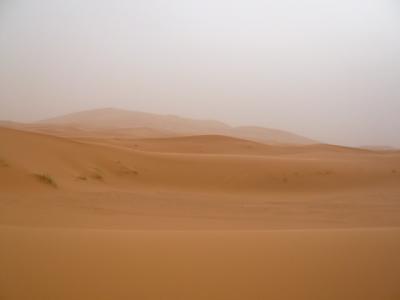2泊3日砂漠ツアー(ラクダ乗りとテント宿泊)3
